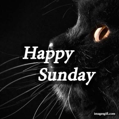 happy sunday images gif