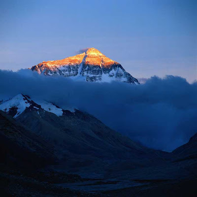 Mount Everest Gold Top