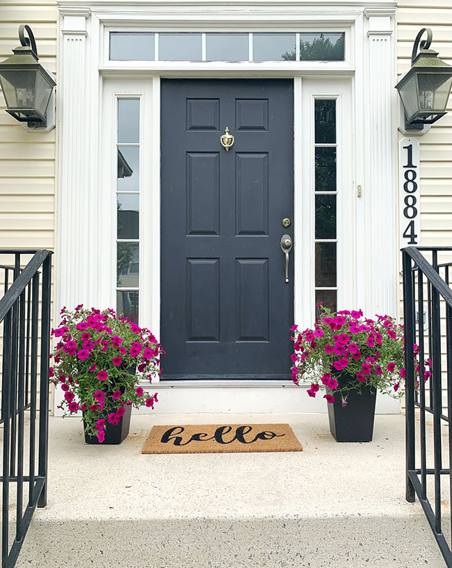 green front door with purple petunias flanking the door and hello door mat