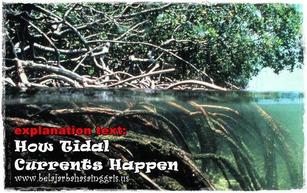 Contoh Explanation Text : How Tidal Currents Happen | www.belajarbahasainggris.us