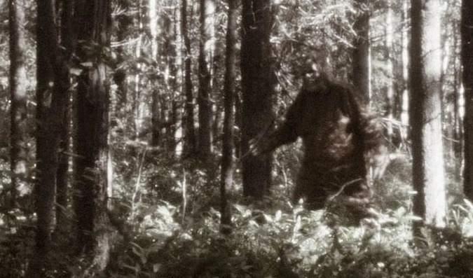 Apa Perbedaan Antara Sasquatch dan Bigfoot?
