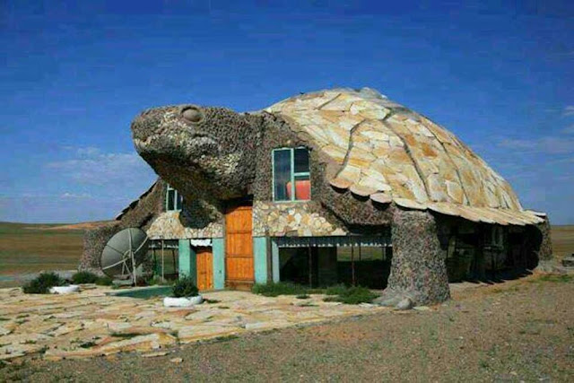 House formed as turtle