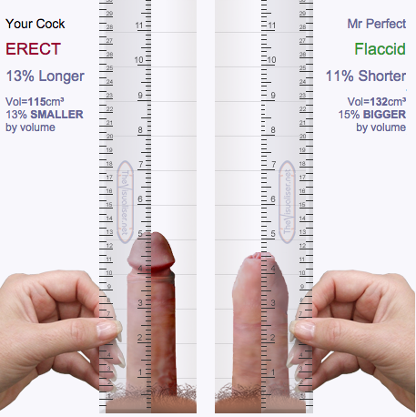average porn star penis length