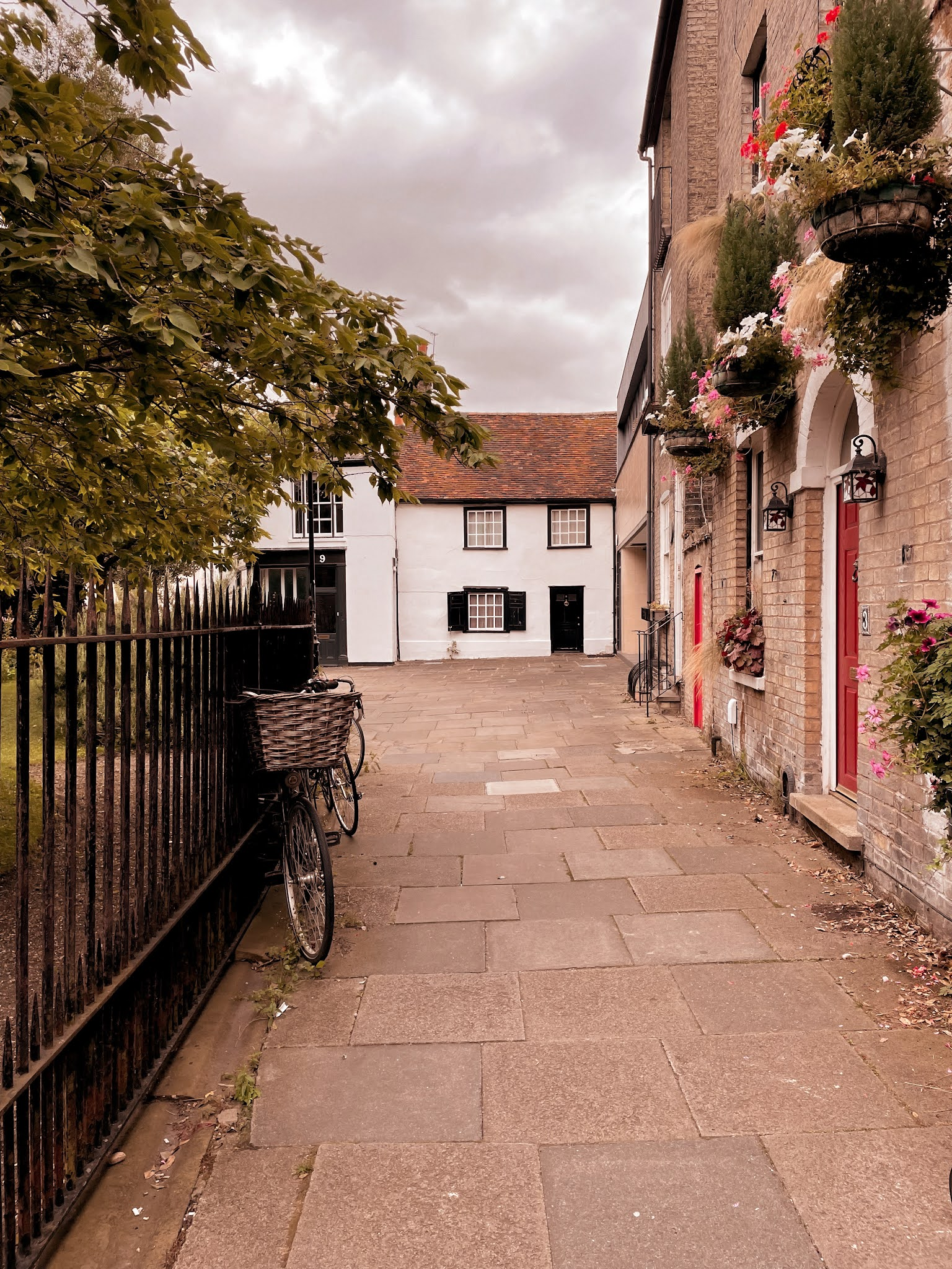 What To See and Do In Cambridge