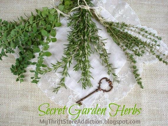 Organic herbs Etsy: Secret Garden Herbs
