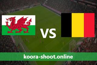 بث مباشر مباراة بلجيكا وويلز اليوم بتاريخ 24/03/2021
