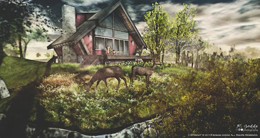 New from Trompe Loeil | The SL Registry