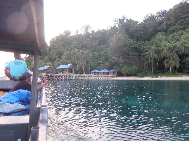 snorkeling holiday to Cendrawasih Nasional Park