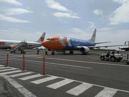 Jasa Angkutan Ekspor Udara My Indo Indonesia