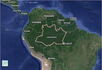 PUNTADAS CON HILO - Página 9 Amazonia
