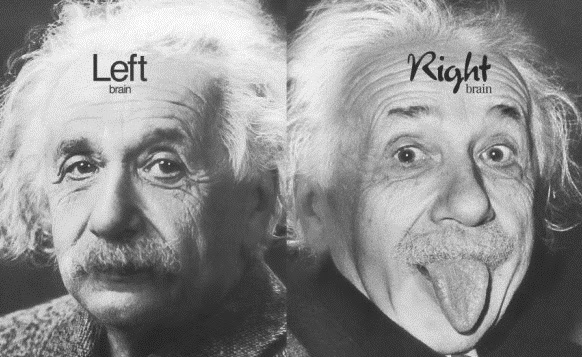 This Explains Why Einstein's Brain Was Special