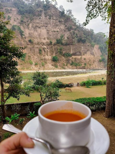 travel, jim corbett, best travel destinations near delhi, nanital, taj jim corbett, indian blogger, travel blogger, corbett national park, taj corbett resort and spa