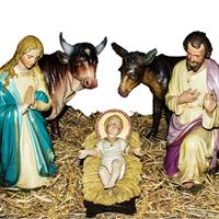 Życzenia na Boże Narodzenie od Mr. Złotówy