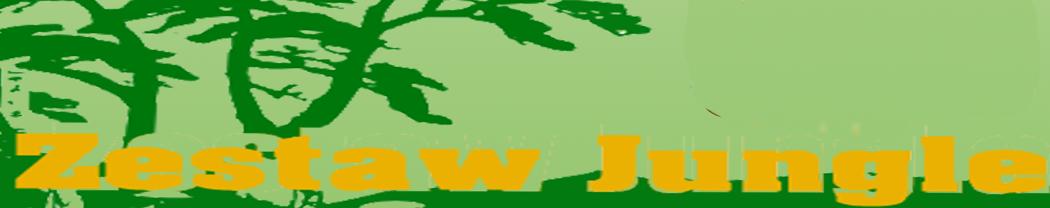 Dmuchańce Wrocław, Atrakcje dla dzieci Wrocław, Event Wrocław, Event Planner Wrocław, Wata cukrowa  wrocław, Urodziny w ogrodzie, Urodziny dla dzieci, Animator