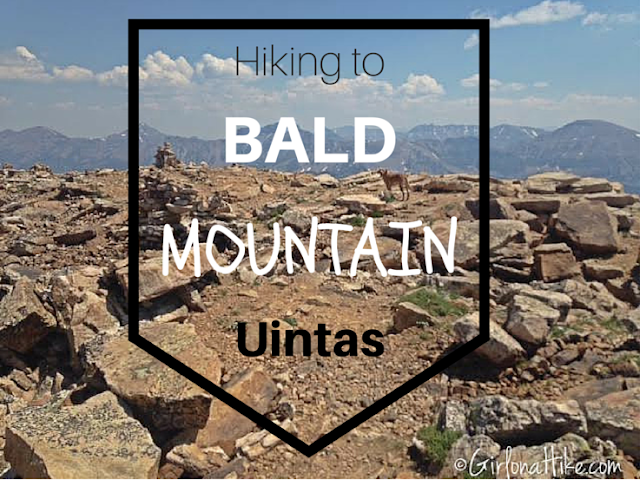 The Best Day Hikes in the Uintas, Bald Mountain Uintas