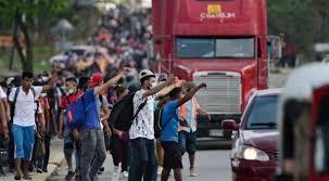 Coronavirus pandemic slowed down global migration by 30%; Indian diaspora the largest: UN report