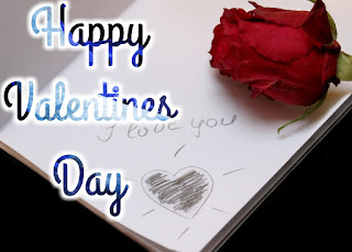 Valentine's Day beautiful red rose photos pictures images