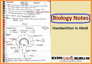 Biology Handwritten  Notes PDF in Hindi