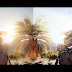 Assassin's Creed Origins Ultra Realistic Graphics Mod | ACO CryNation Graphics Mod | Download Page