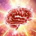 Beyin Kapasitemizin 10 Katını Kullanabiliriz
