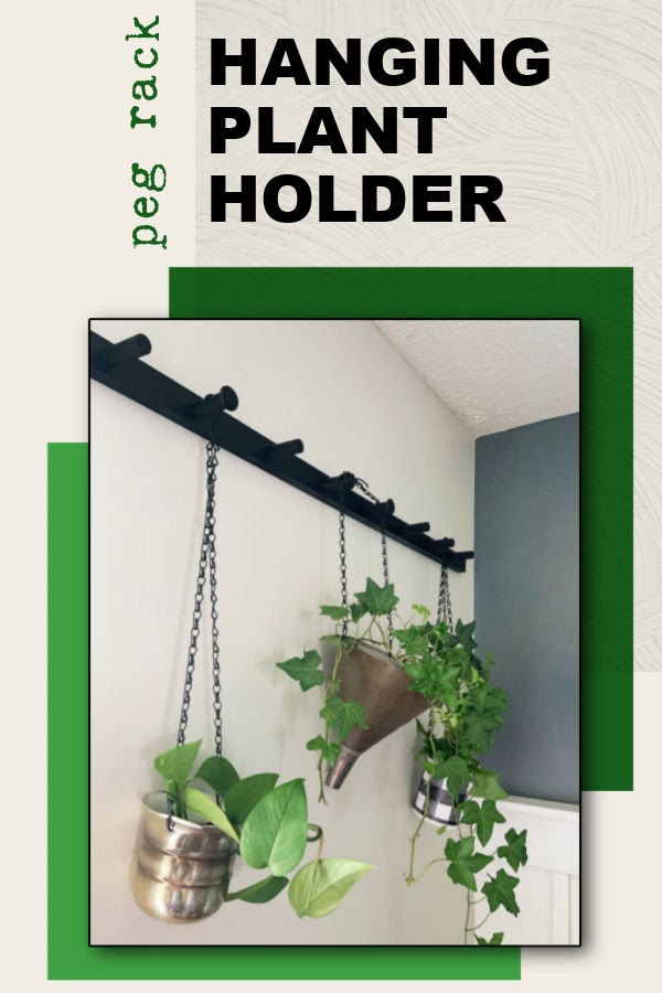How to Hang plants in Living Room - peg rack hanging plant holder.