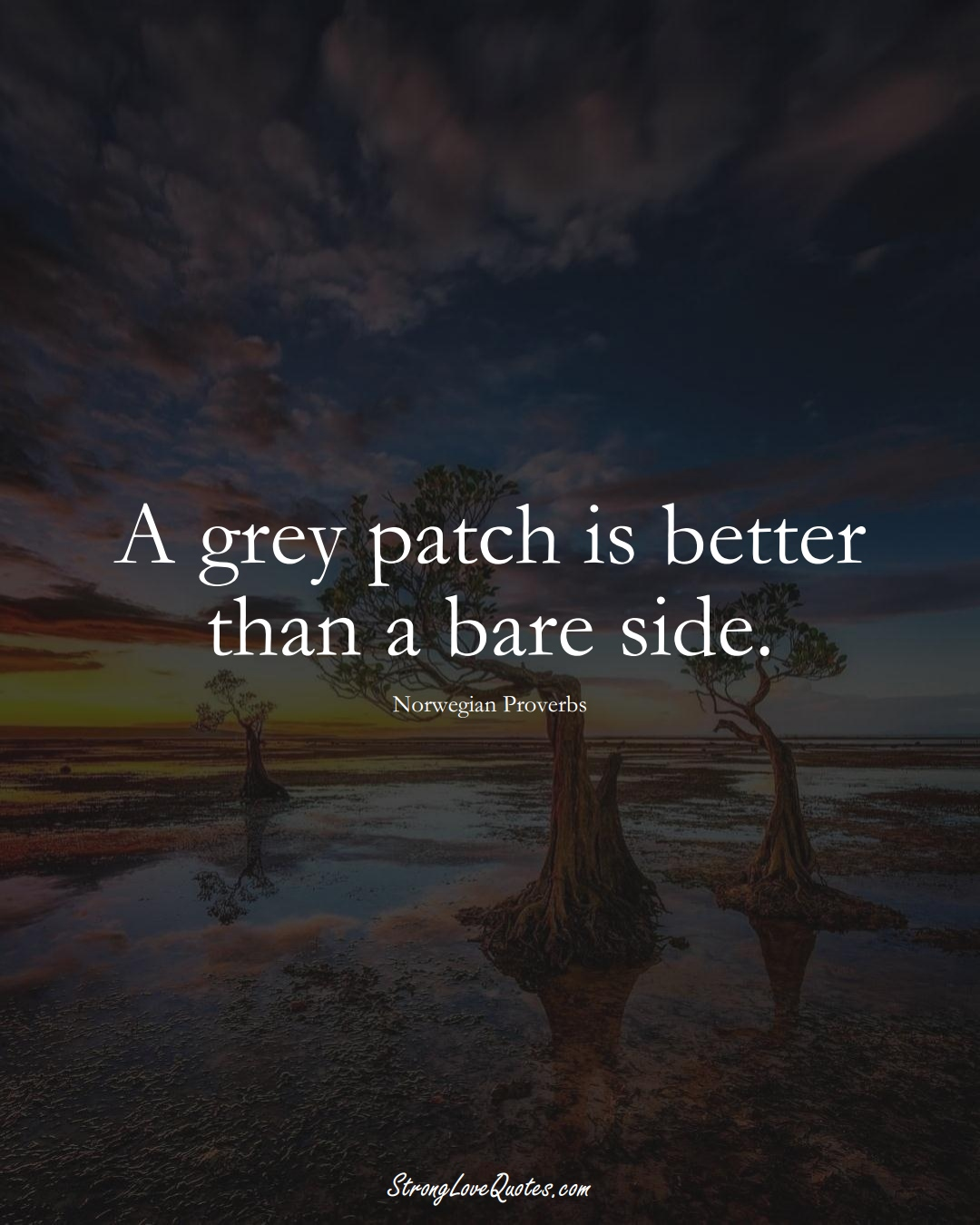 A grey patch is better than a bare side. (Norwegian Sayings);  #EuropeanSayings
