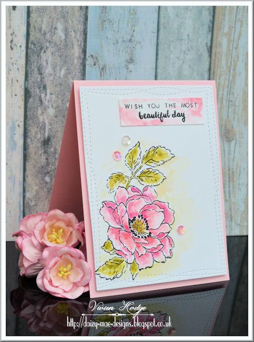 Flower, Pink, CAS