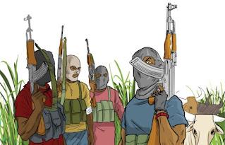 12 KILLED, SEVERAL WOMEN RAPED IN ZAMFARA VILLAGE BY BANDITS
