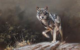 contemporaneo-realismo-pinturas-de-animales cuadros-animales-pinturas