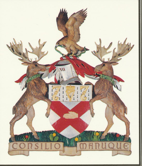 Shared Symbolism Saint Patrick Ireland And The Rcsi College Arms