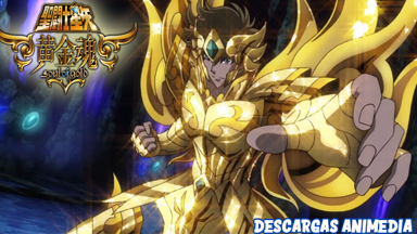 https://descargasanimedia.blogspot.com/2020/09/saint-seiya-soul-of-gold-1313-audio.html