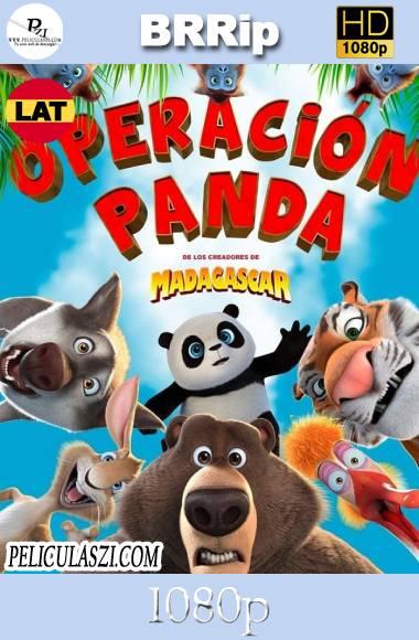 ¿Quién Perdió un Panda? (2019) HD BRRip 1080p Dual-Latino
