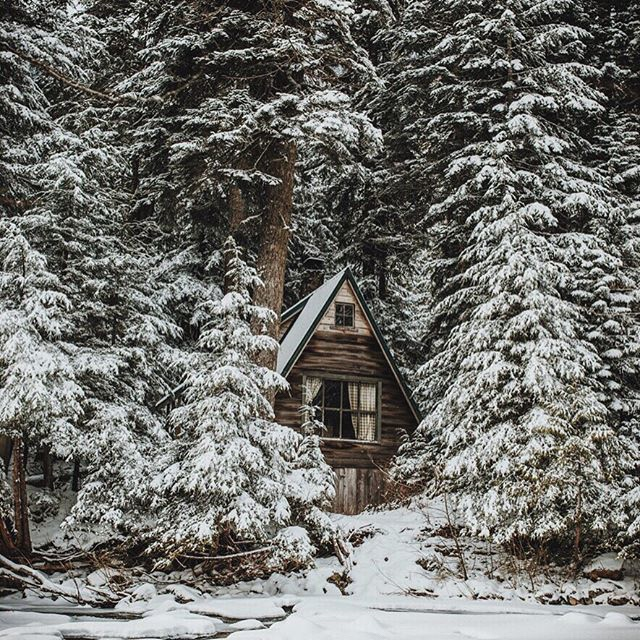 Oh, By The Way...: An A Frame Cabin In The Woods