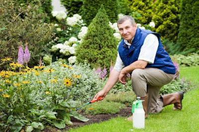 Conserva jardín sano