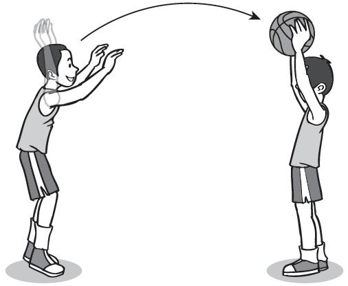 Macam Jenis Teknik Dasar Permainan Bola Basket Lengkap Blog Om Jhon