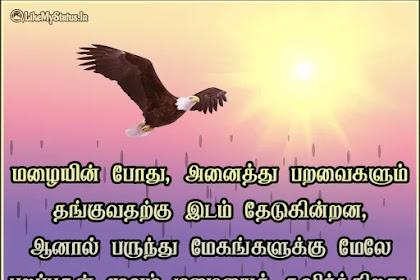 15 தன்னம்பிக்கை மேற்கோள்கள் இமேஜ் | Tamil Motivational Quotes With Images
