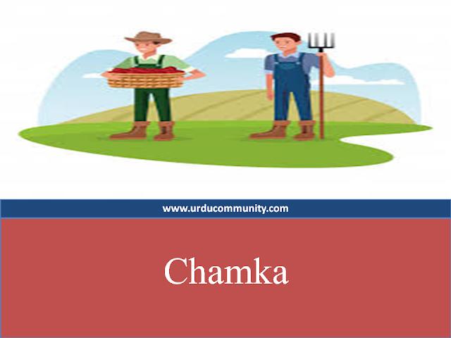Urdu kids story-Chamka