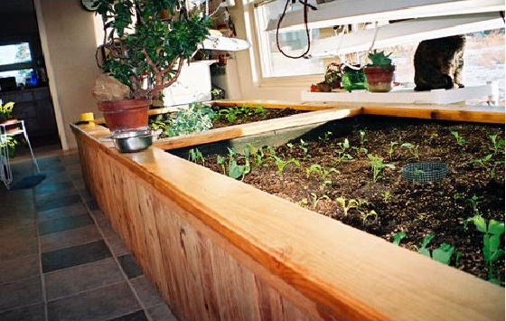 Plan Your Vegetable and Herb Garden