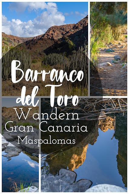 Wanderung zu den Wasserfällen im Barranco del Toro | San Agustín/Maspalomas | Wandern auf Gran Canaria 05