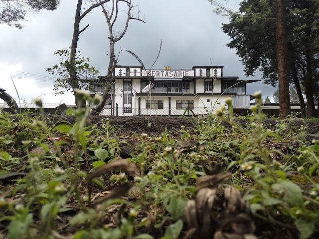 Pabrik Teh Kertasari Jawa Barat