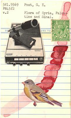Deleuze tape recorder postage stamp bird library card Dada Fluxus mail art collage