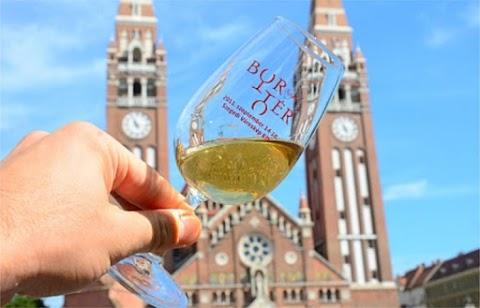 Ismét őszi bormustrát rendeznek Szegeden