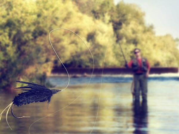 Your Fall Fishing Trip
