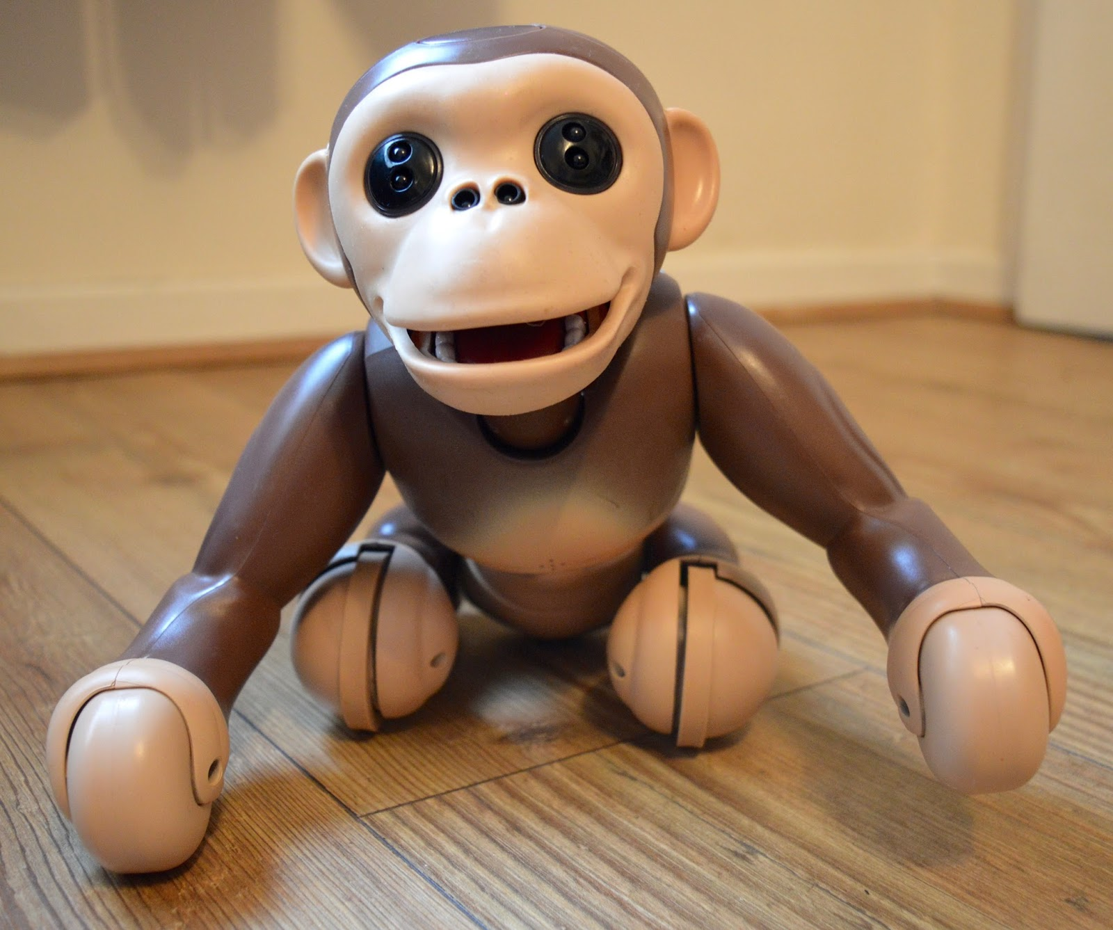 Zoomer Chimp Review | Sit down command