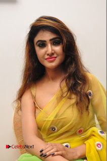Actress Sony Charishta Pictures in Saree at Kalamandir 6th Anniversary Celebrations  0035