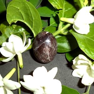 Mustika Macan Kumbang Hitam Ganas