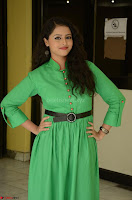 Geethanjali in Green Dress at Mixture Potlam Movie Pressmeet March 2017 067.JPG