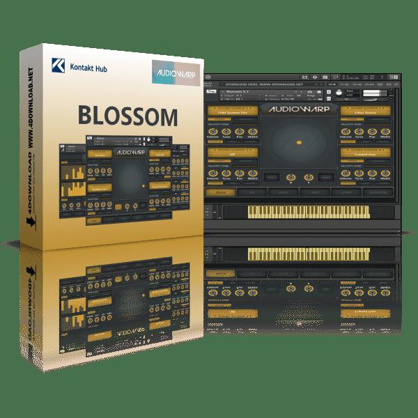 Audiowarp Blossom KONTAKT Library