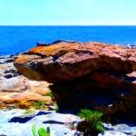 'Mar i roques (Toni Arencón Arias)'