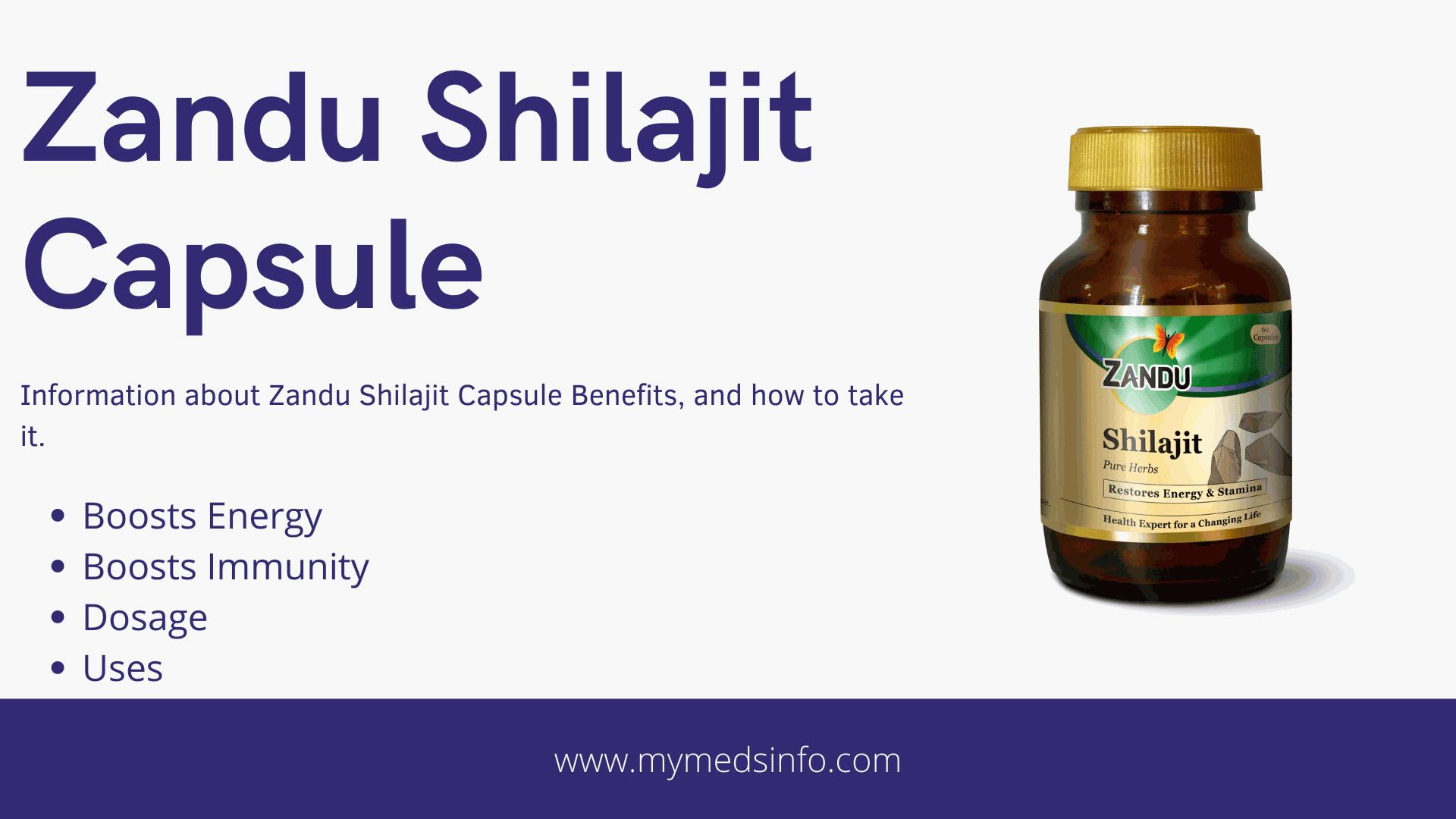 Zandu Shilajit Capsule Benefits In Hindi - mymedsinfo.com